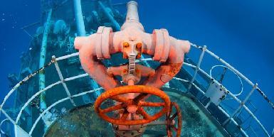 Kittiwake Shipwreck & Artificial Reef