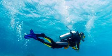 Valentine's Dive Center