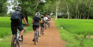 Mocha Spoke Bicycle Tours